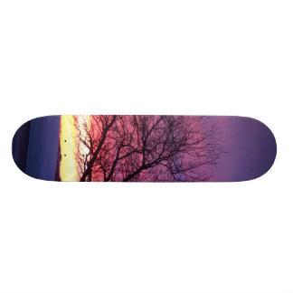 Sunset Country Skateboard