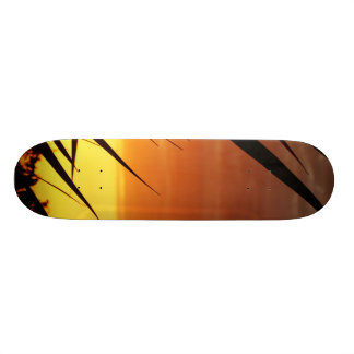 Sunset Custom Skate Board