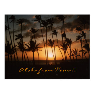 Sunset (Customizable) Postcard