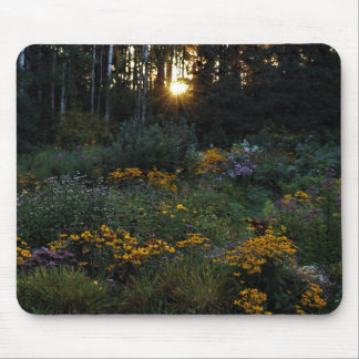 Sunset Early September Gardens Mouse Pad