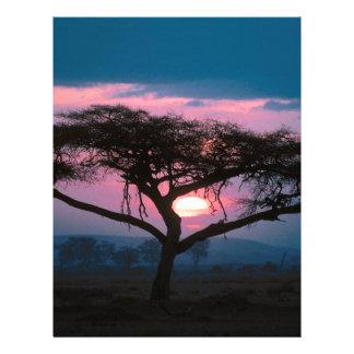 Sunset East African Letterhead Design