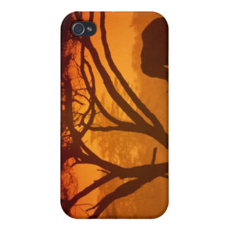 Sunset Elephant iPhone 4 Cover