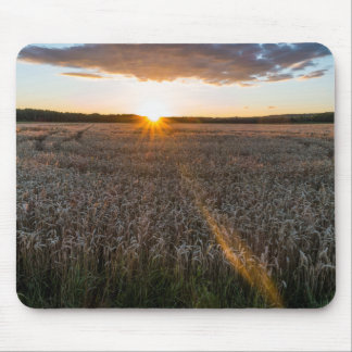 Sunset Field Mouse Pad