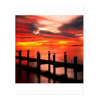 Sunset Fort Myers Prom Florida Postcard