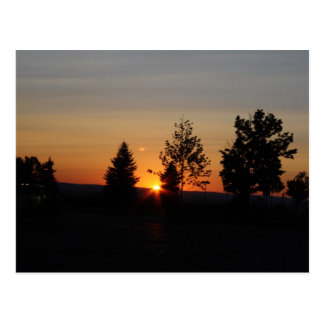 sunset from the tree line postcard
