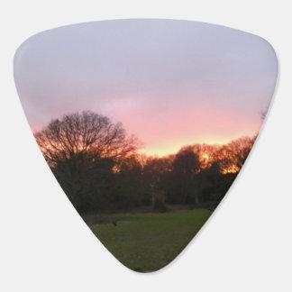 Sunset Guitar Picks Pack of five Pick