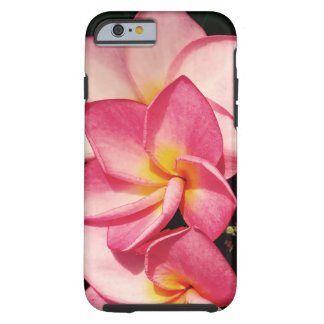 Sunset Hawaiian Frangipani Radiant Blooms Tough iPhone 6 Case