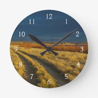 Sunset highlights the red bark of bushes wall clock