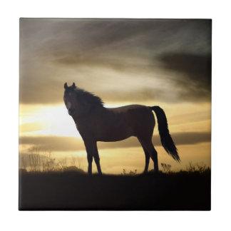Sunset Horse SIlhouette Gift Tile