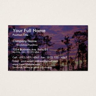 Sunset in Everglades National Park, Florida, U.S.A Business Card