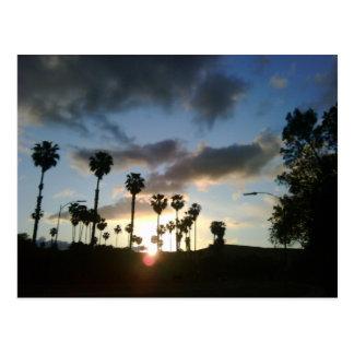 Sunset in San Jose Ca Postcard