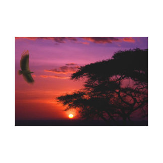Sunset in Serengeti Canvas Print