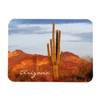 Sunset in the East Valley Arizona Vinyl Magnet