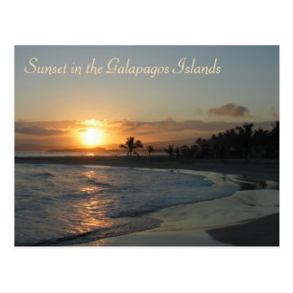 Sunset in the Galapagos Islands Postcard