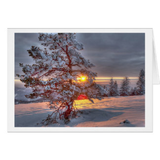 Sunset into the Black Forest Card