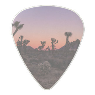 Sunset Joshua Tree National Park Acetal Guitar Pick
