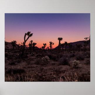 Sunset Joshua Tree National Park Poster