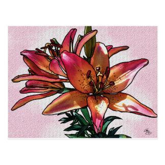 Sunset lily postcard