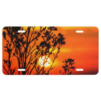 Sunset License Plate