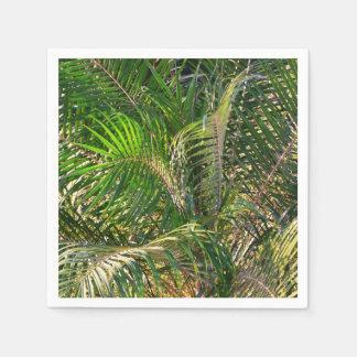 Sunset Lit Palm Fronds Disposable Napkins