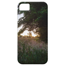 Sunset meadow in Cornwall iPhone 5/5S Cases