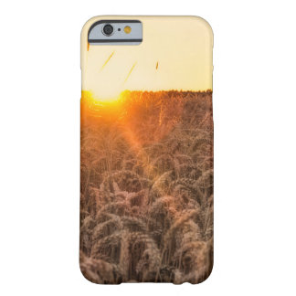 Sunset morning field barely there iPhone 6 case