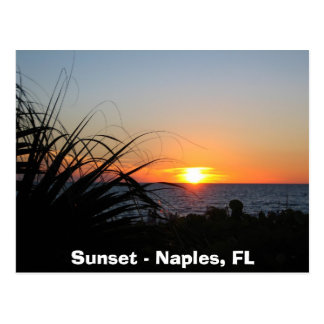 Sunset - Naples, FL Postcard