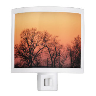 Sunset Nite Lights