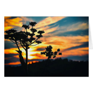 Sunset of our life greeting card