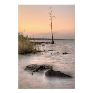 Sunset on Louisiana's Swamps Photo Print