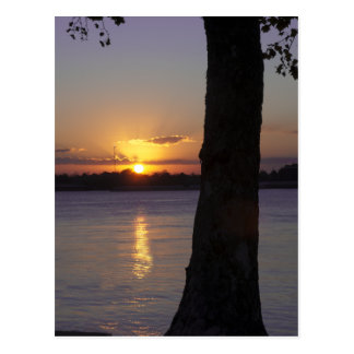 Sunset on Mississippi River Postcard