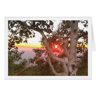 Sunset on Mt. Lemmon Greeting Card
