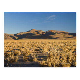 Sunset on the Altiplano of Argentina Postcard