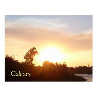 Sunset over Calgary skyline Postcard