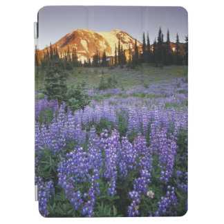 Sunset over Mt. Adams and a sub-alpine meadow iPad Air Cover