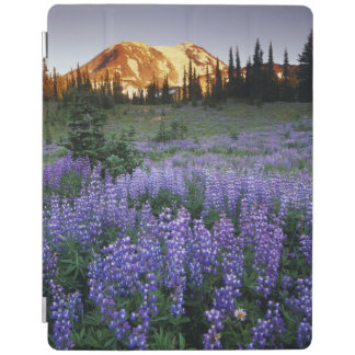 Sunset over Mt. Adams and a sub-alpine meadow iPad Cover