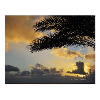 Sunset Over the Atlantic Ocean, Madeira, Postcard