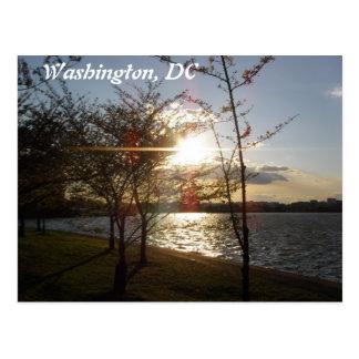 Sunset over the Potomac River Postcard