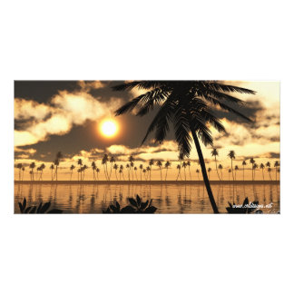 Sunset Palm Photo Card