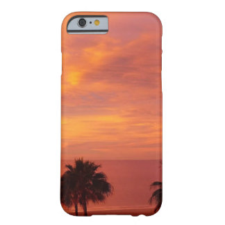 Sunset, Palm Trees and the Beach iPhone Case