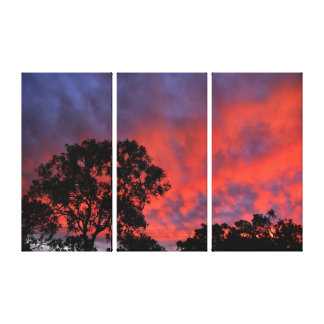 SUNSET QUEENSLAND AUSTRALIA CANVAS PRINT