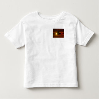 Sunset Rescue Toddler T-shirt