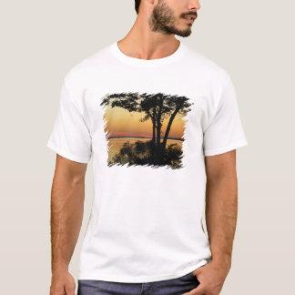 Sunset Riverwinds T-shirt