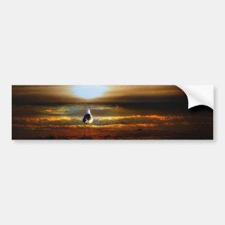 Sunset Seagull Bumper Sticker