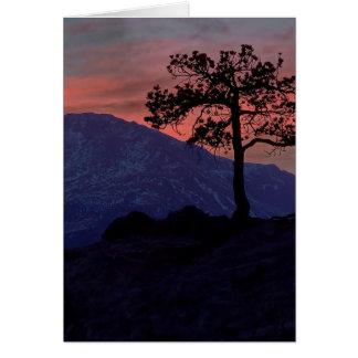 Sunset Sentinel Card