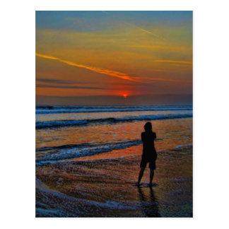 Sunset Silhouette Postcard