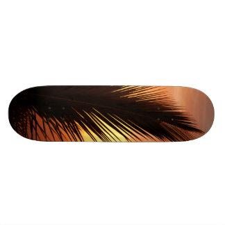 Sunset Skate Board