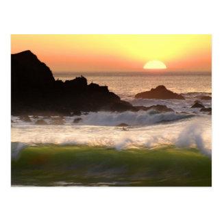 Sunset surfer postcard
