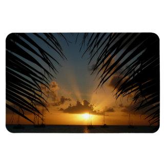 Sunset Through Palm Fronds Premium Magnet