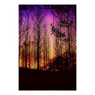 sunset through the trees colour changed poster